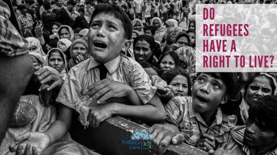 Rohingya refugees world refugee day