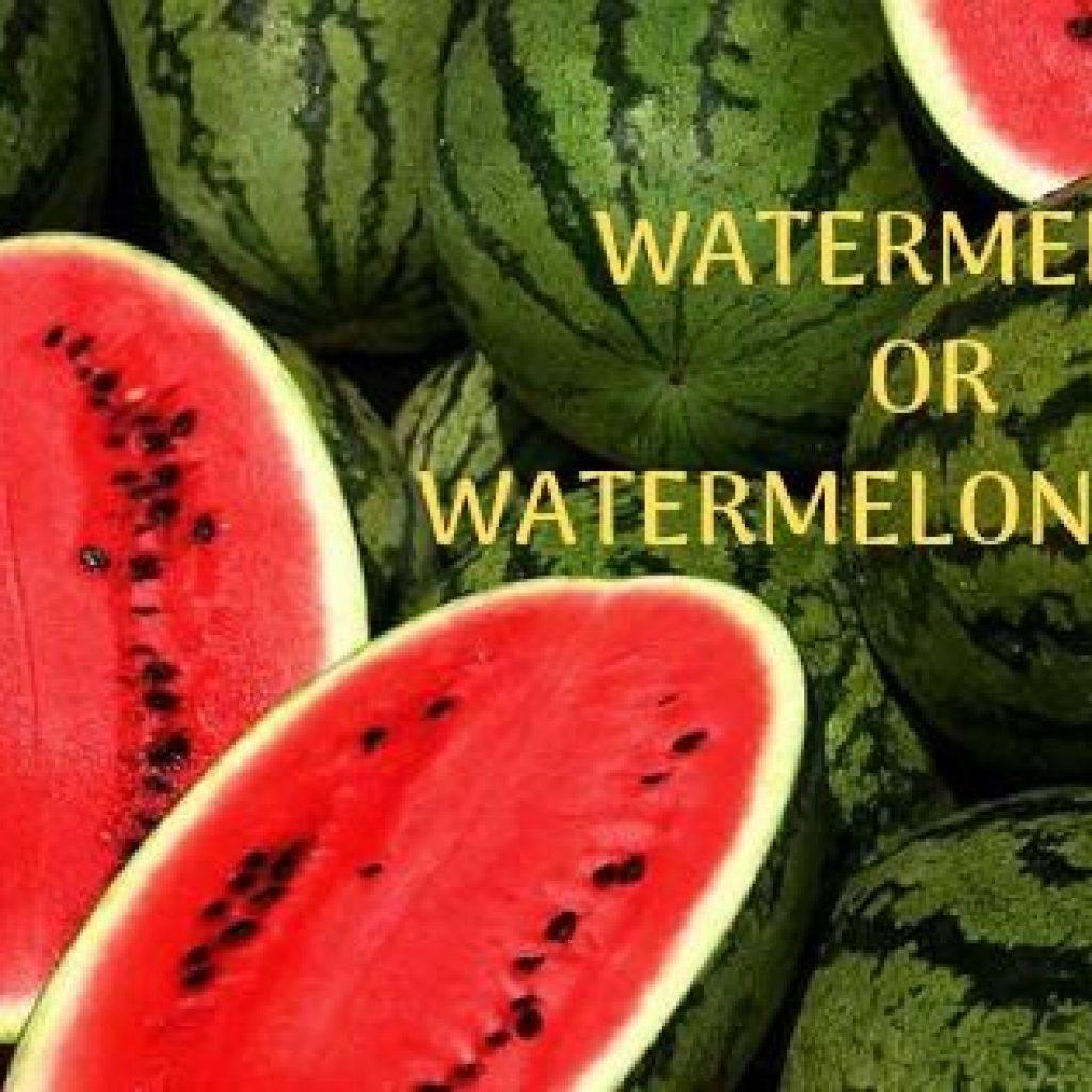 Watermelon or watermelon seeds benefits