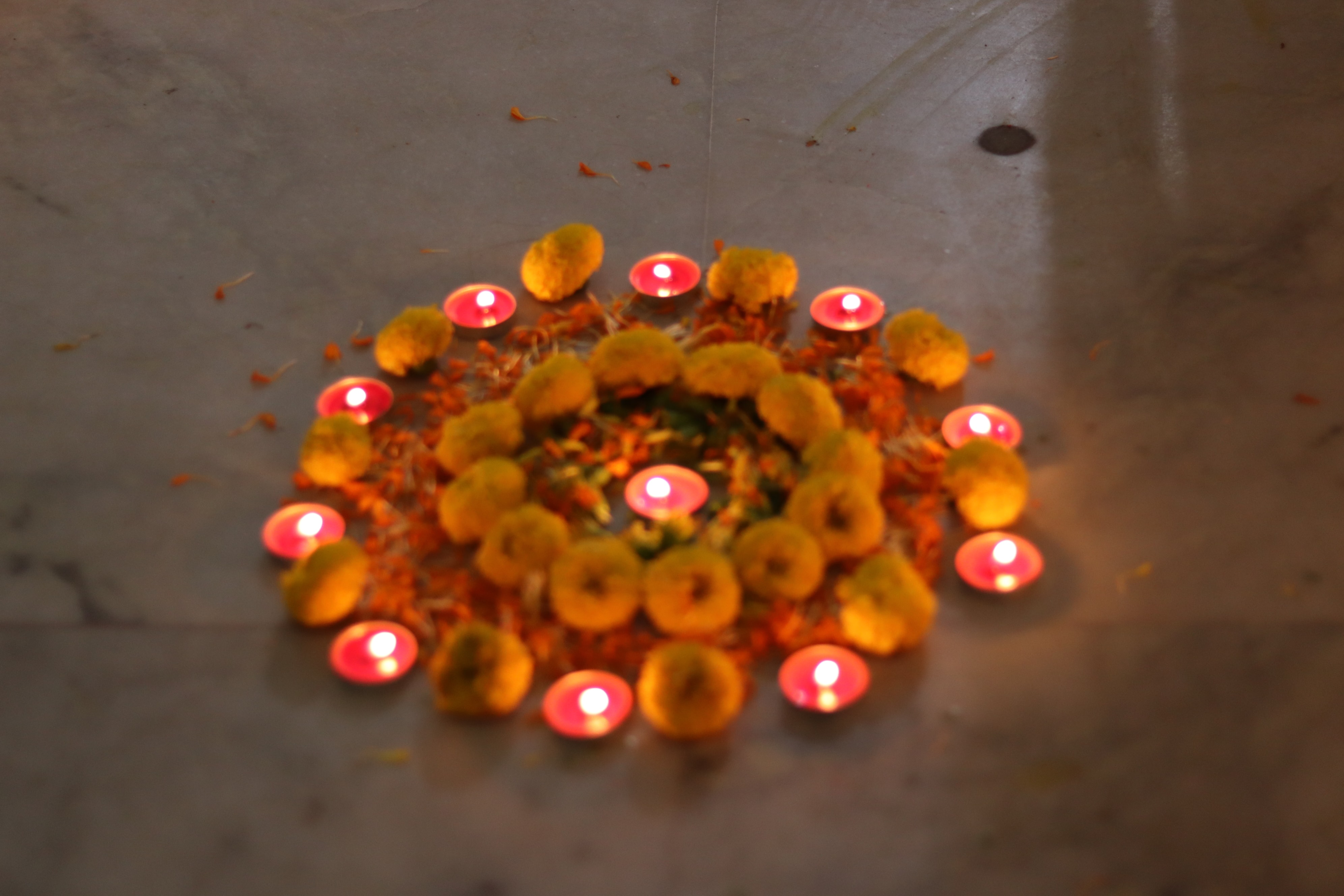 Diwali celebration at Tribeca Care