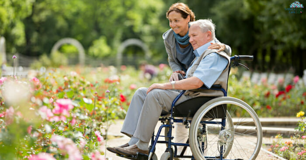 a guide to wheel chairs